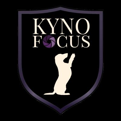 KynoFocus-Logo-Icon